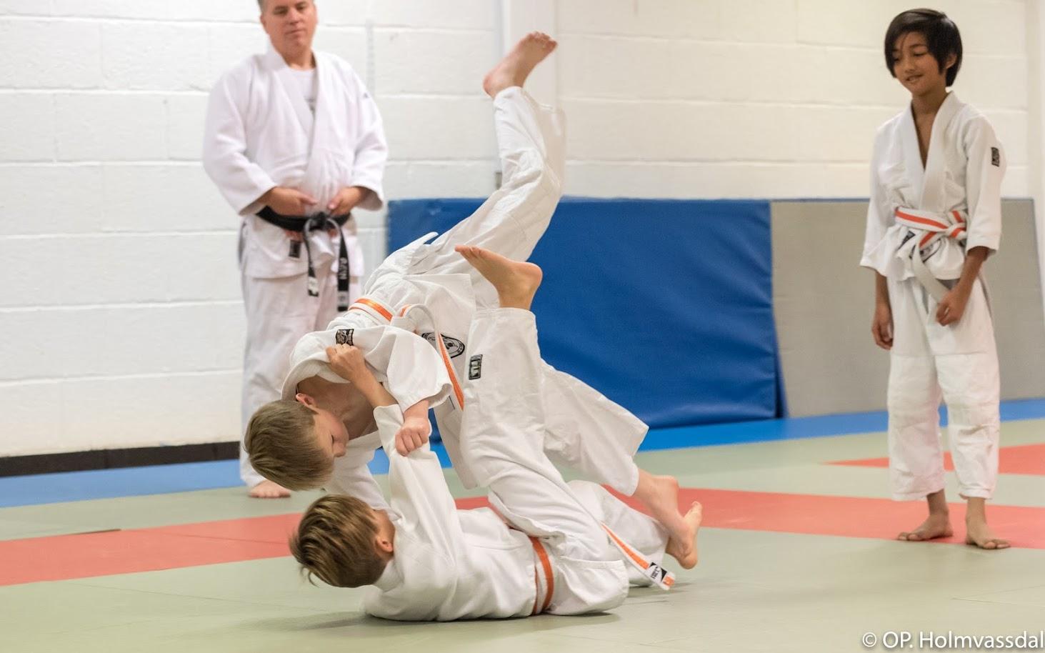 Velkommen tilbake på trening med luftige kast og annen judomoro! Foto: Ole-Petter Holmvassdal (C)